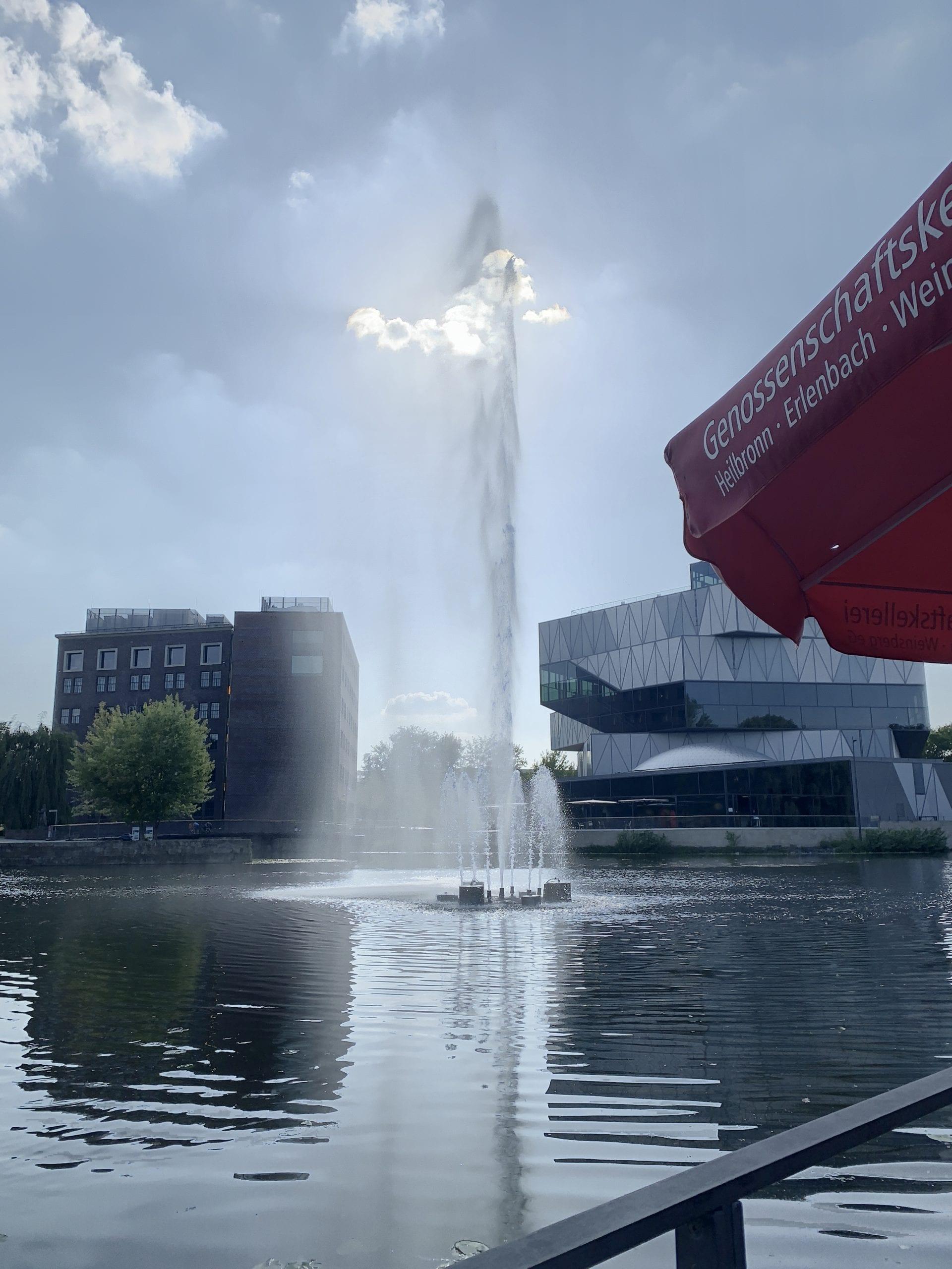 Wasserspiel im Neckar